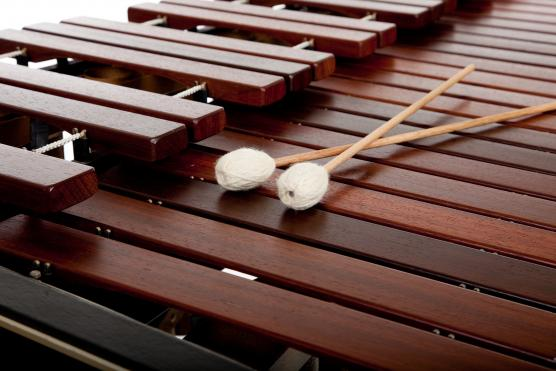 Marimba with two mallets.