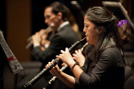Shebani Dandekar - UC Davis Arts